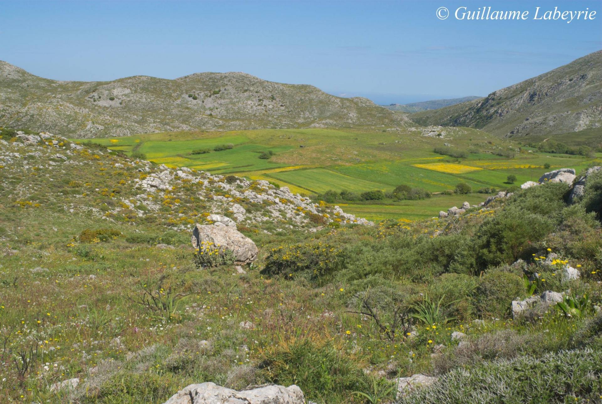 plateau de Gious kambos